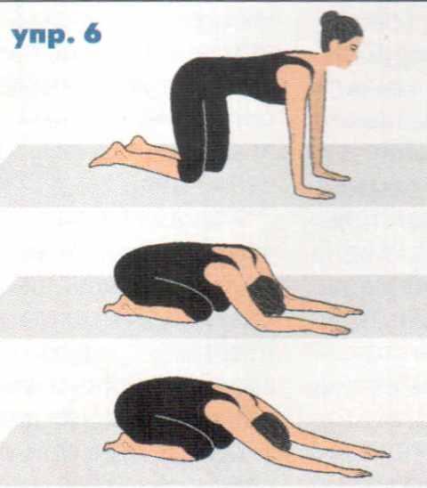 Хочешь жить долго и счастливо - выполняй эти упражнения